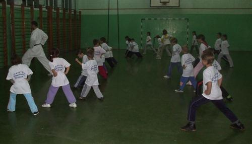 karate korektivni program (Custom1)